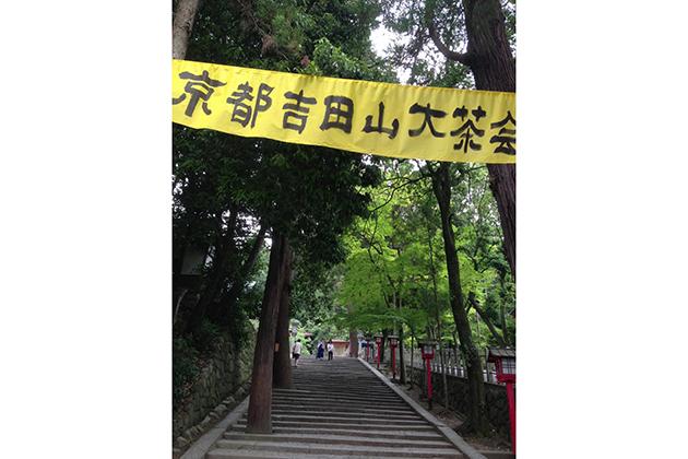 「京都吉田山大茶会」は毎年、新茶が出回り始める頃、吉田神社の境内にて開催