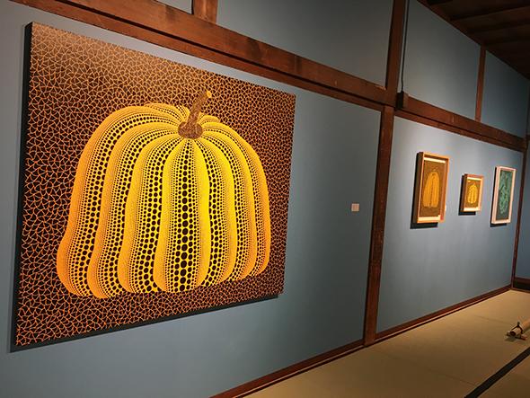 代表作である南瓜も。1981年に描かれたものと2007年に描かれたものでは作風も異なり、見比べるのも興味深い