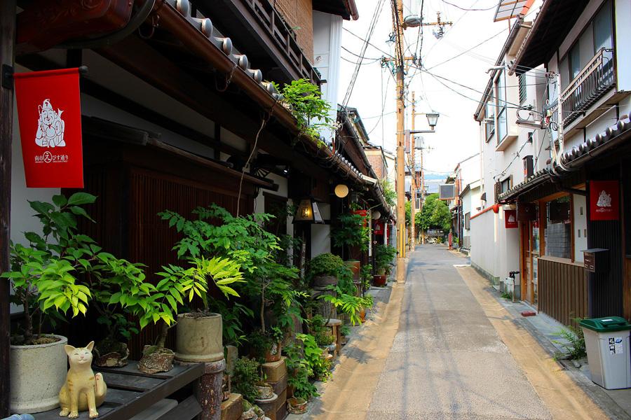 奈良町の南市町エリア。かつては色町だった時代もあり、当時は芸妓さんが猫を飼っていたことが多かったと伝わる