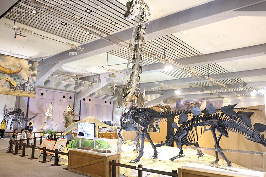 7月25日に開幕した『メガ恐竜展2017 巨大化の謎にせまる』(大阪南港 ATCホール)