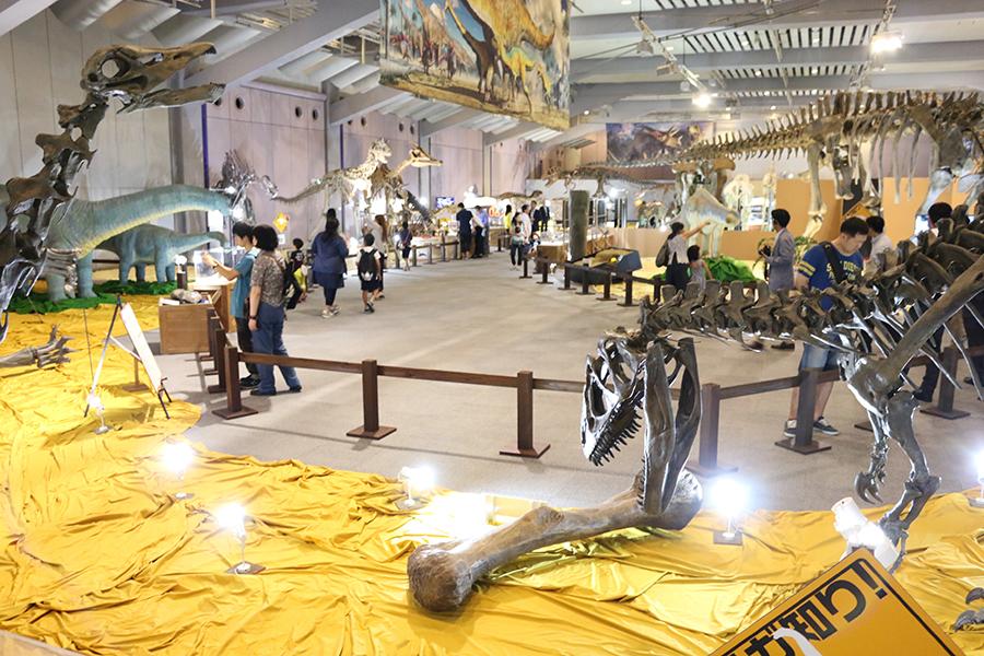 展示数は約200点、その迫力は博物館に迫るほど(大阪南港 ATCホール)