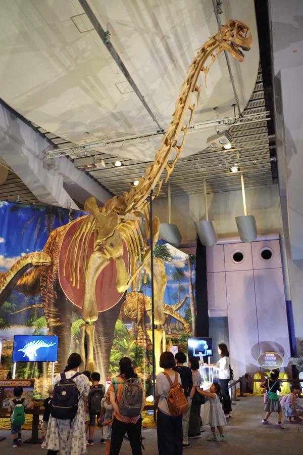 全長30メートルのトゥリアサウルスの復元骨格