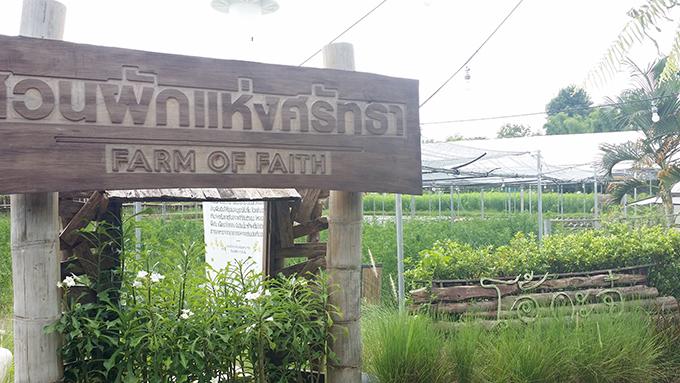 レストランの奥、隣接した自家農園の見学も自由