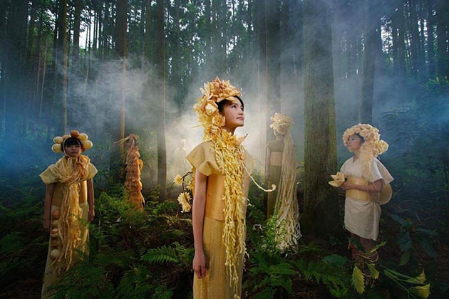河内長野市の森の中で木の音を奏でるイメージ