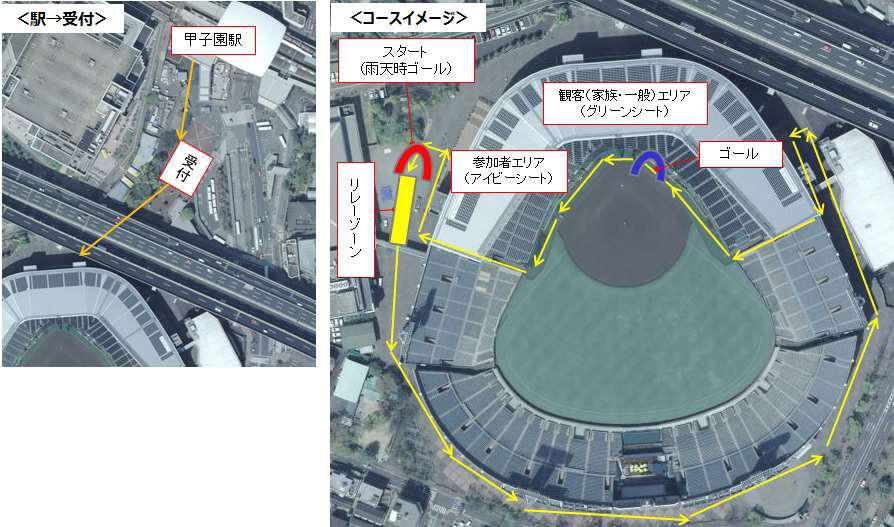 ぐるりと甲子園球場の周りを走ってからグラウンドに移動し、人工芝エリアを駈けることができるコース