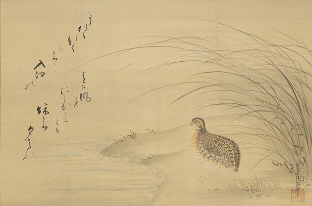 土佐光起 水辺鶉図(源俊頼歌意図)1幅 江戸時代・17世紀後半 個人