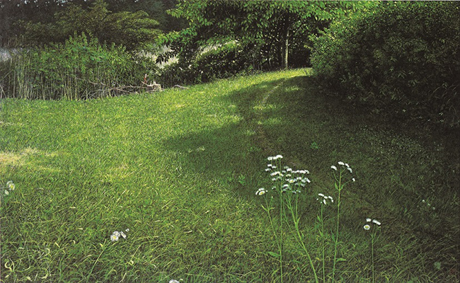 犬塚勉《梅雨の晴れ間》1986年、個人蔵