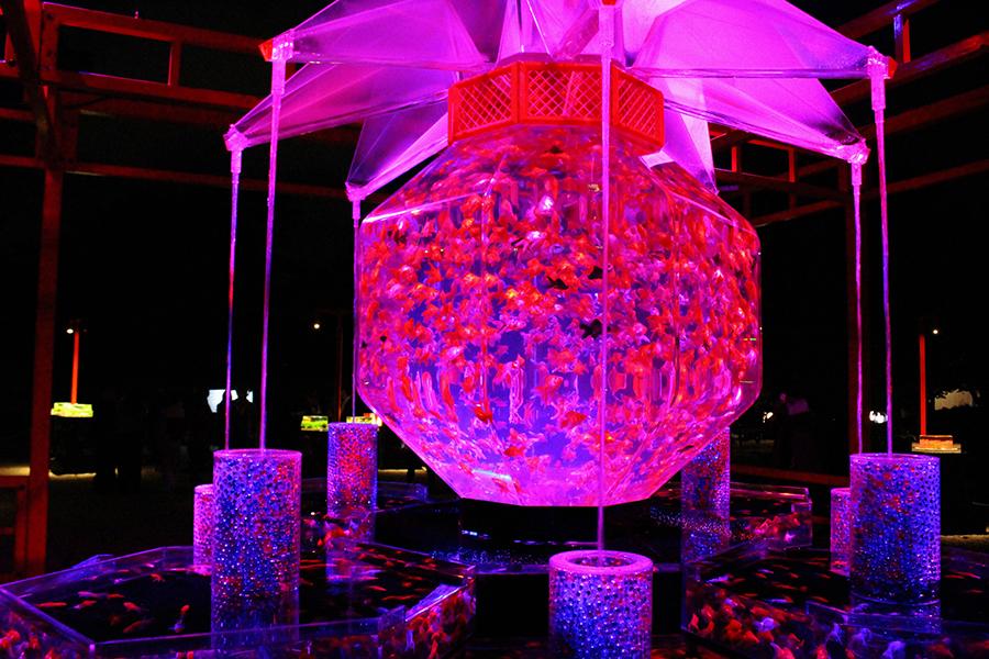 巨大金魚鉢と17のアクアリムで構成される「超・花魁」は、西日本初登場(25日・京都市内)