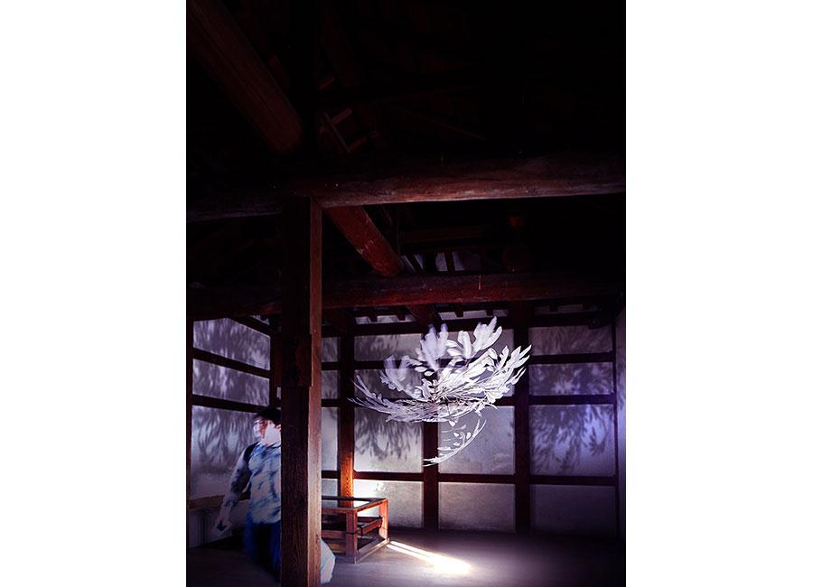 暗い廊下に浮遊する、小松宏誠「白鷺」イメージ