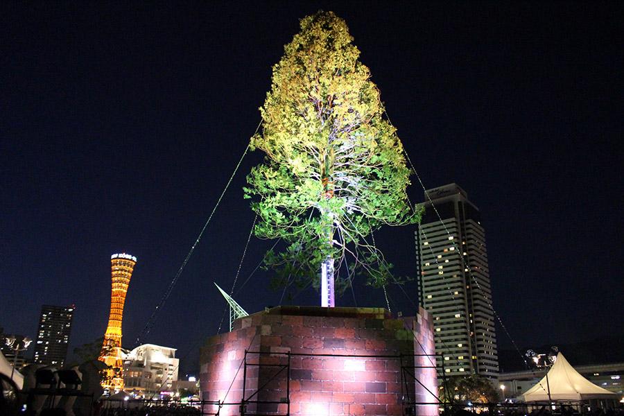 まるで木そのものが輝いているようなライティング。緑や黄、赤色などに変化する(2日・神戸市内)