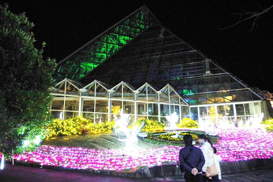 ピラミッド型の温室自体もライトアップされる