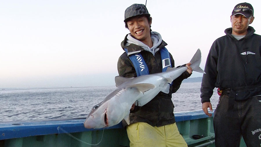 シンゴジラ コロナ