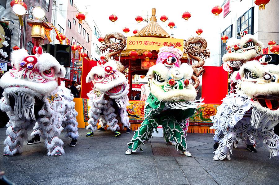 30回目を迎える南京町の『春節祭』。30体の獅子舞の大演舞を予定
