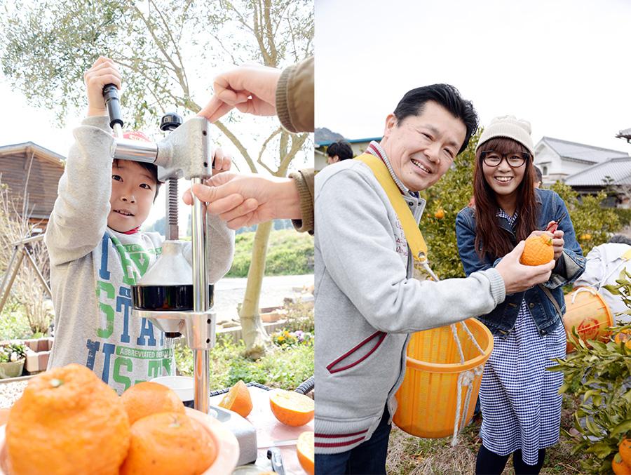 柑橘類も豊富な紀の川市。農業体験を楽しめるワークショップも