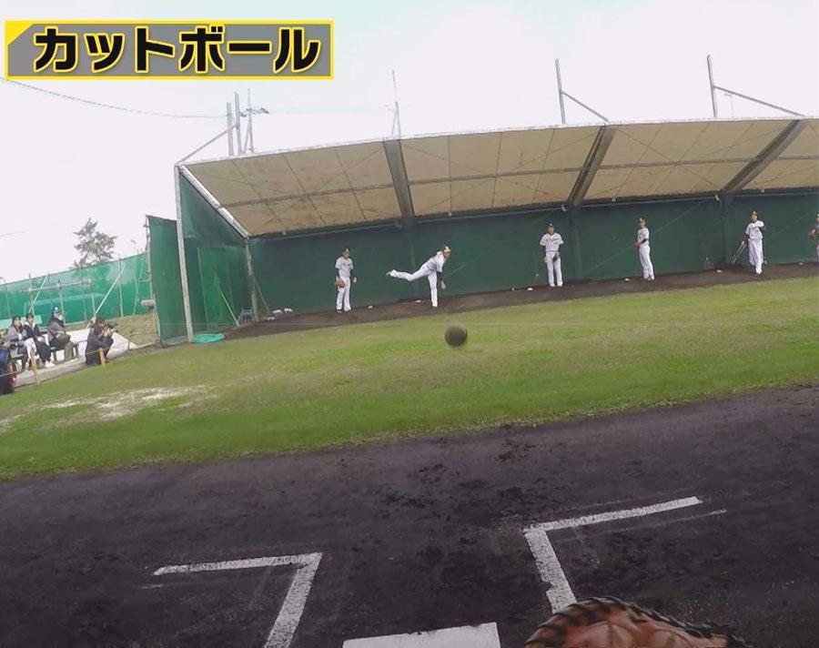 藤浪投手のカットボールなど剛速球を体感