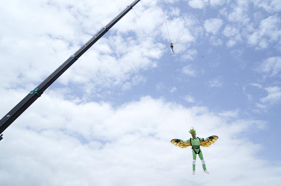 クマバチはなぜほかの昆虫にくらべて小さな羽で自由に飛べるのか? その秘密に迫る