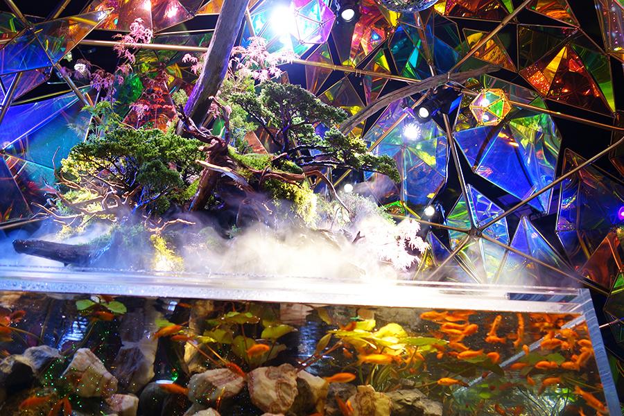 インドア型テーマパーク「奈良祭都」内にある、金魚ミュージアムコーナー