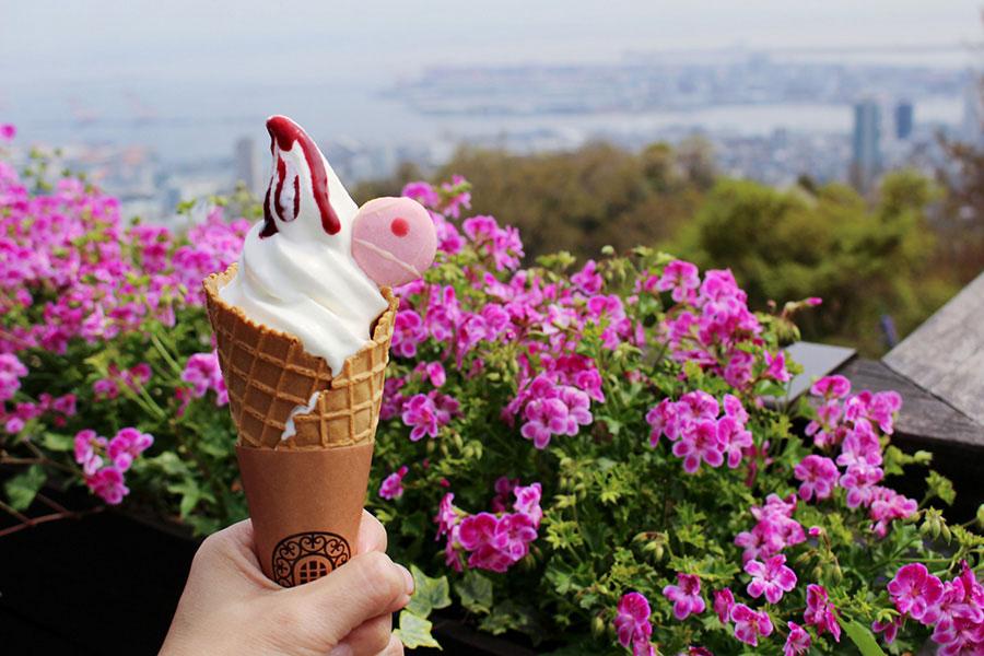 マカロンとソースに彩られた「ガーデンソフトクリーム」500円