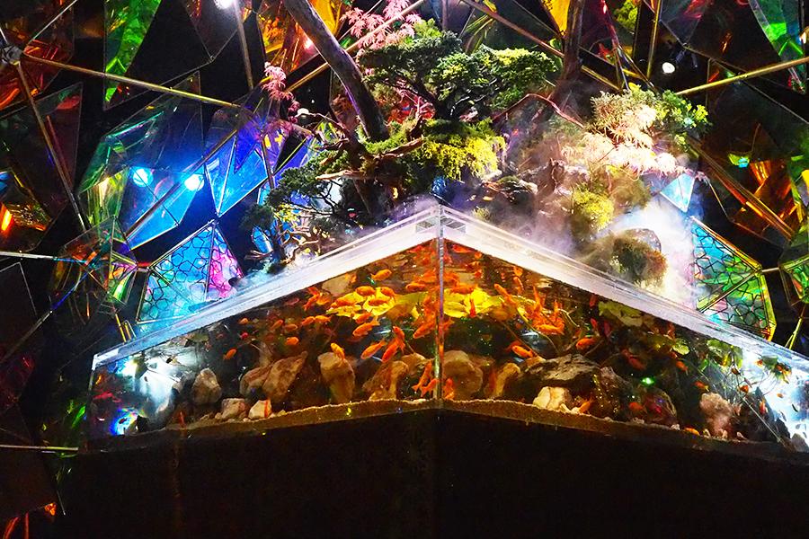 ステンドグラスとテラリウムの部屋。水槽内の金魚は大和郡山で飼育されたもの