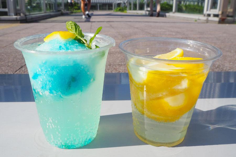 甘いソルベを溶かしながら、味の変化を楽しむ「レモンサワーソルベ」(左)と、広島生口島のレモンを使った「名物レモンサワー」
