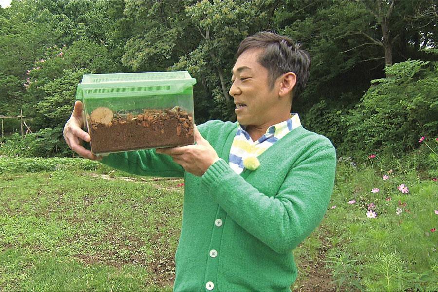 カマキリ先生として昆虫のすばらしさを子どもらに伝える香川照之