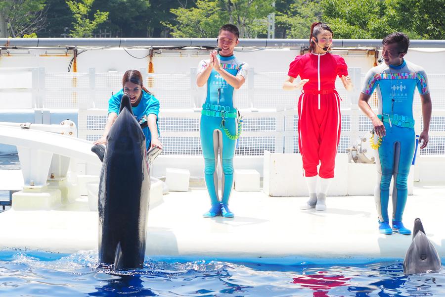 イルカと心を通わせていくパフォーマーたち