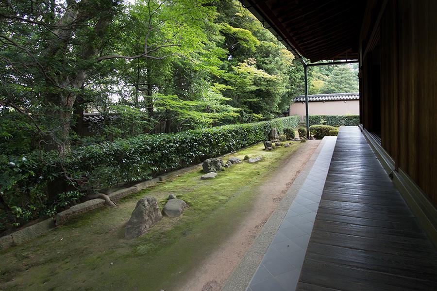 村田珠光「七五三の庭」