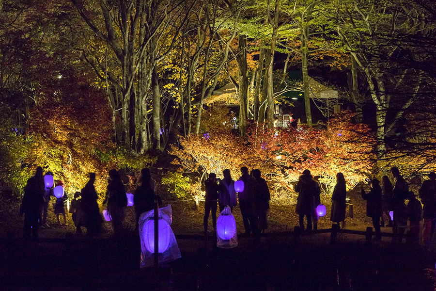 提灯の光が園内を移動していく風景が幻想的なアート作品、高橋匡太の「提灯行列ランドスケープ」