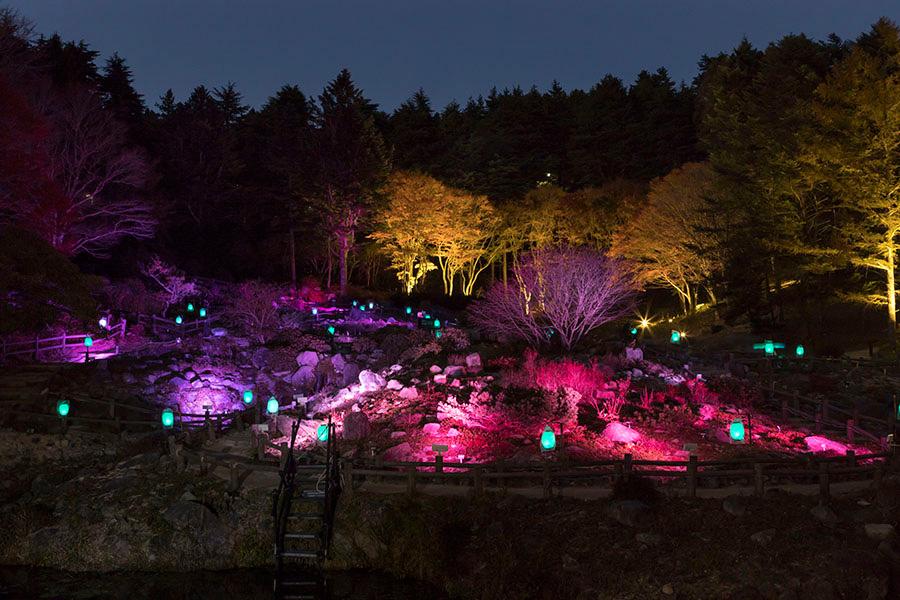 幻想的にライトアップされるロックガーデンは、『六甲ミーツ・アート芸術散歩2018』における、高橋匡太の作品の一部
