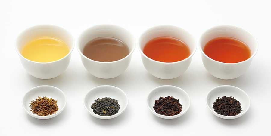 日本茶専用バーカウンターに登場する、和紅茶。静岡券両河内やぶきた紅茶や、鹿児島県屋久島紅茶など