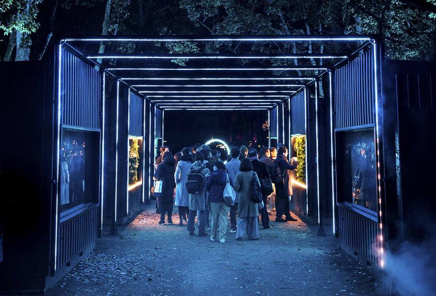 森のなかに入っていくような、幻想的な入口