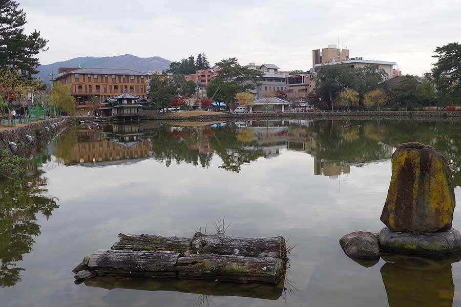 猿沢池の近く、左奧に見えるのが「セトレならまち」