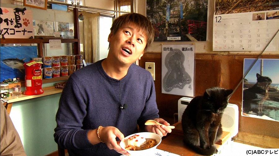 カフェで猫と相席する野性爆弾・ロッシー
