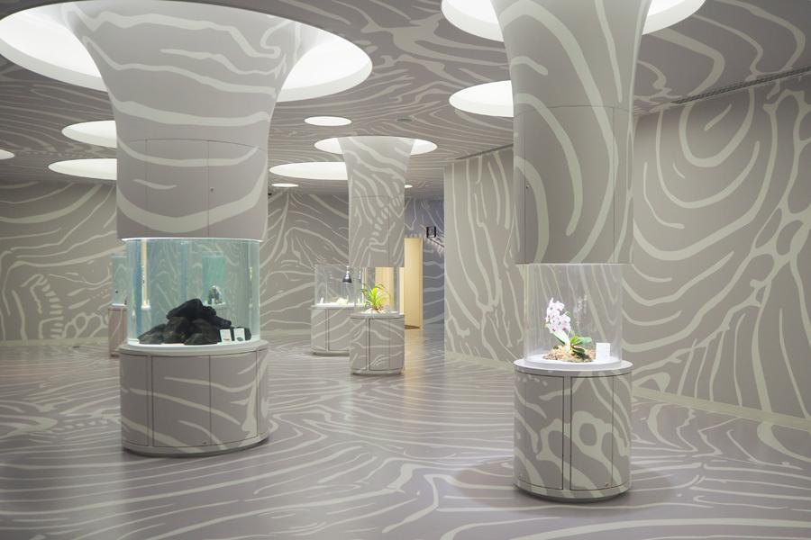 「ニフレル」に3月1日に誕生する新ゾーン「かくれるにふれる」。空間デザインは成魚と模様が異なるタテジマキンチャクダイの幼魚がモチーフに