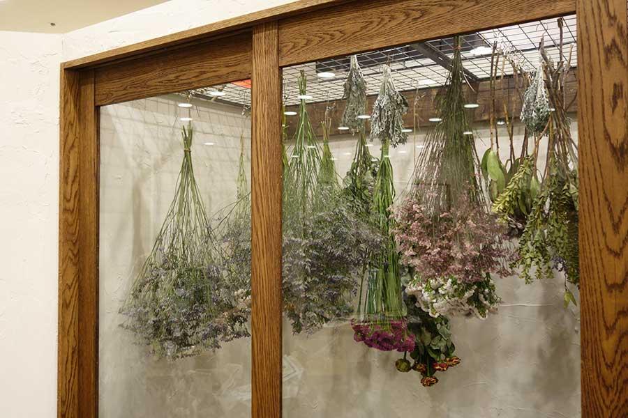 神戸市西区の「フランクリンズ」が初出店。植物を活かしたインテリアや雑貨を制作し販売