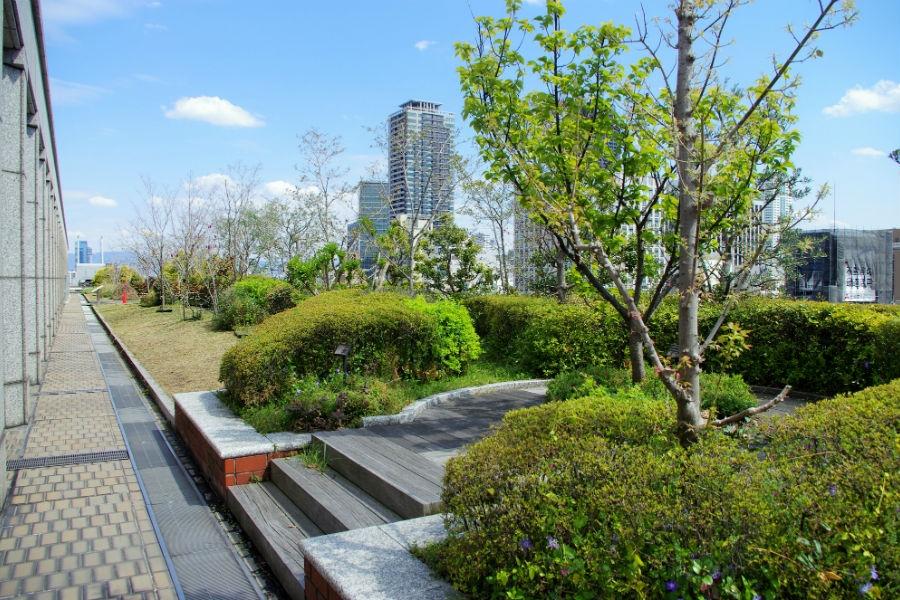 淀屋橋や北浜、遠くは大阪城を眺められる大阪市役所本庁舎屋上の南ブロック(12日)