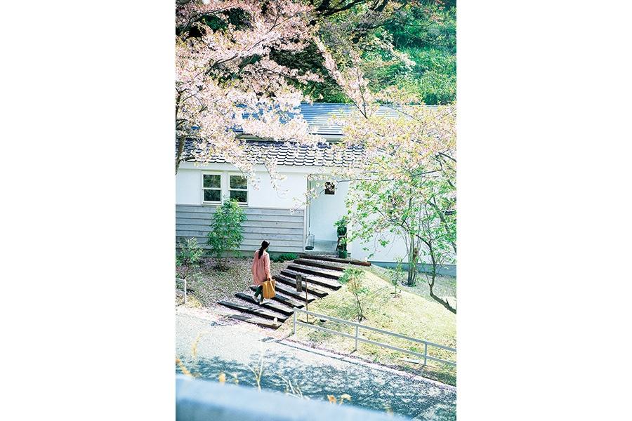 別荘地に建つ一軒家のカフェ。焼き菓子のテイクアウトも(森のオト。こぞらそう)