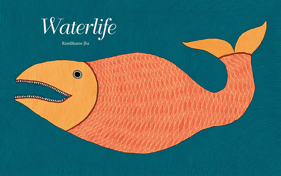 『水のいきもの』 Waterlife/2011