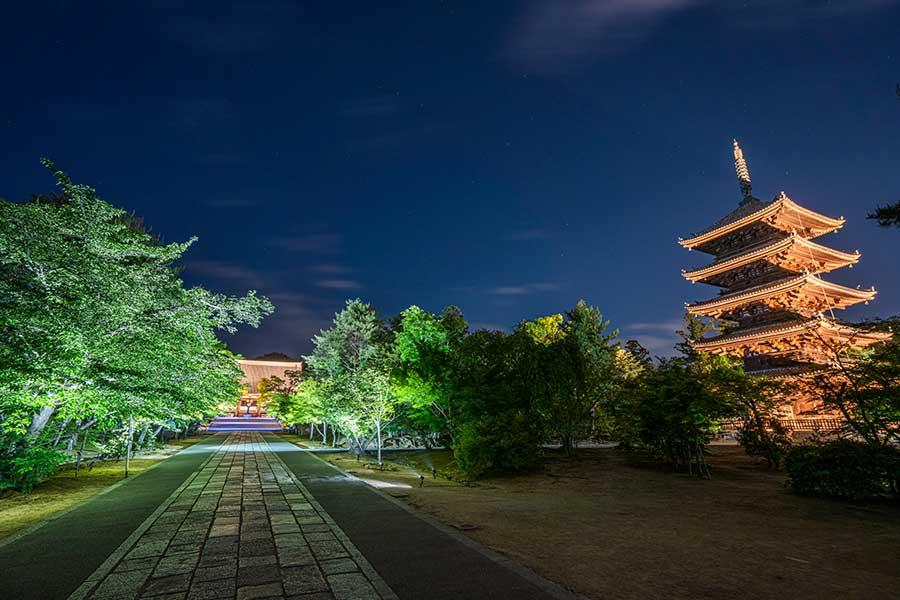国宝の「金堂」(左)と「五重塔」