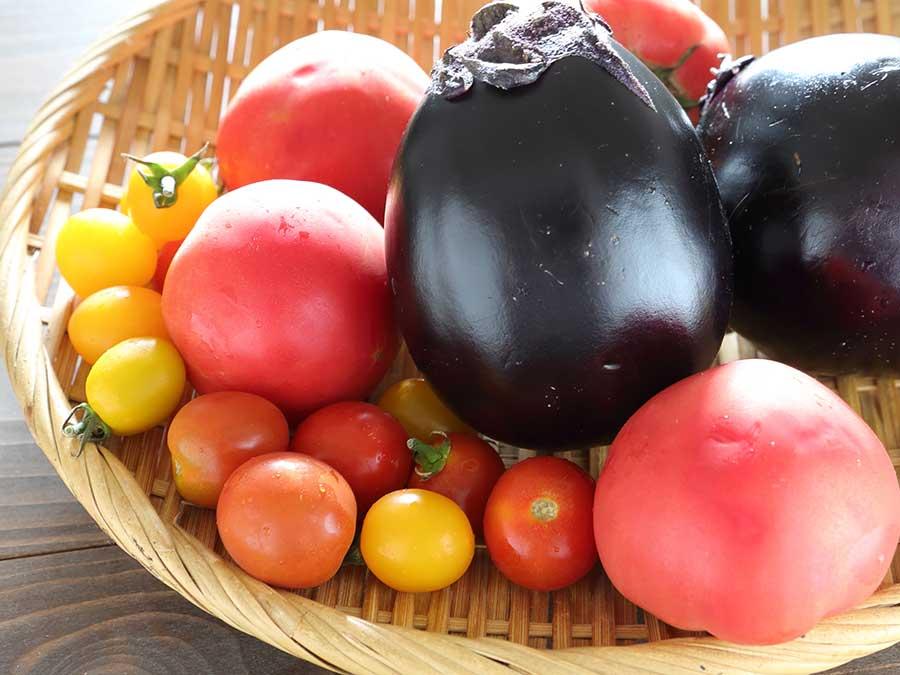 「尾崎珈琲店」のトマトとナスのかき氷用の食材。冬には大根を使ったかき氷を提供予定だそう