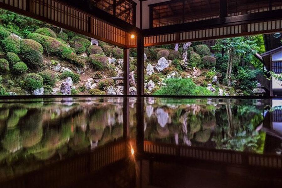 上書院から眺める、紅葉の名所「名勝庭園(浄土苑)」の景観