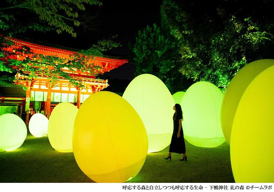 呼応する森と自立しつつも呼応する生命ー下鴨神社 糺の森」の卵状の作品は触ると色が変化していく
