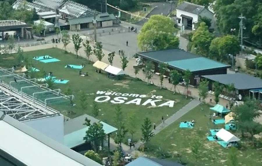 7月上旬まで登場予定の「OSAKA芝生アート」
