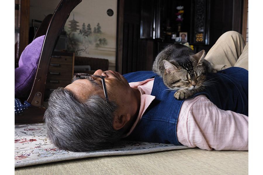 展示予定写真 ©Mitsuaki Iwago  ©2018「ねことじいちゃん」製作委員会