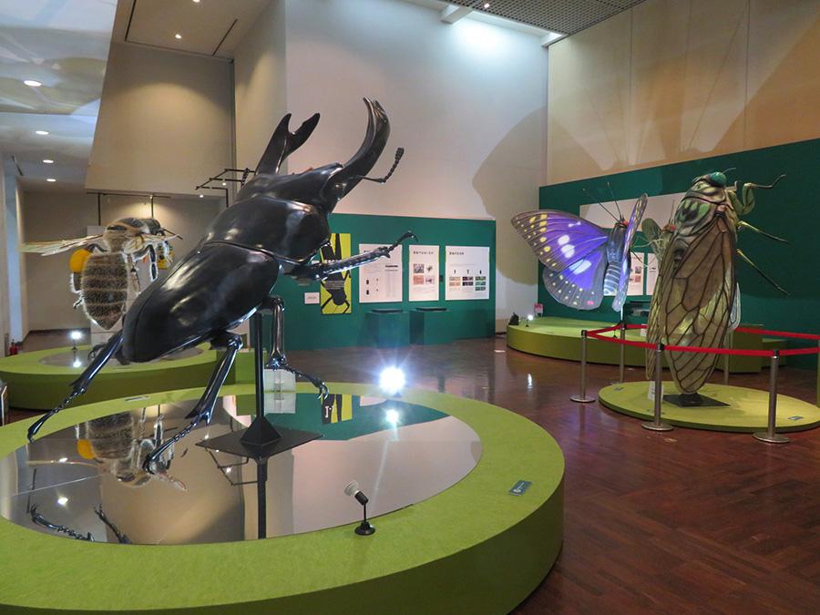 展覧会の冒頭を飾る全長約2メートルの巨大昆虫模型