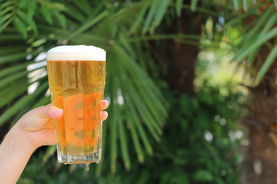 小豆島の無農薬レモンを使った「野良レモンビール」