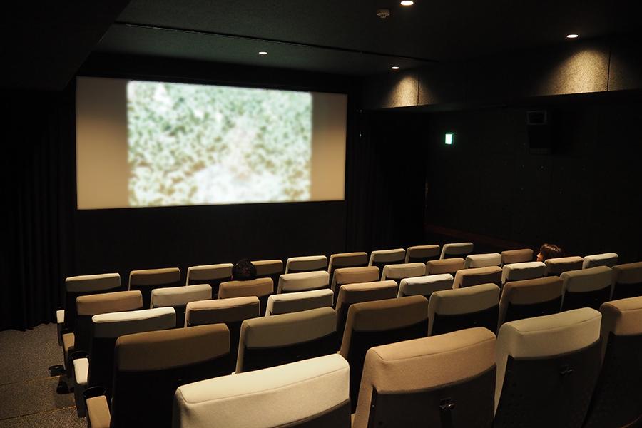 54席のスクリーン2