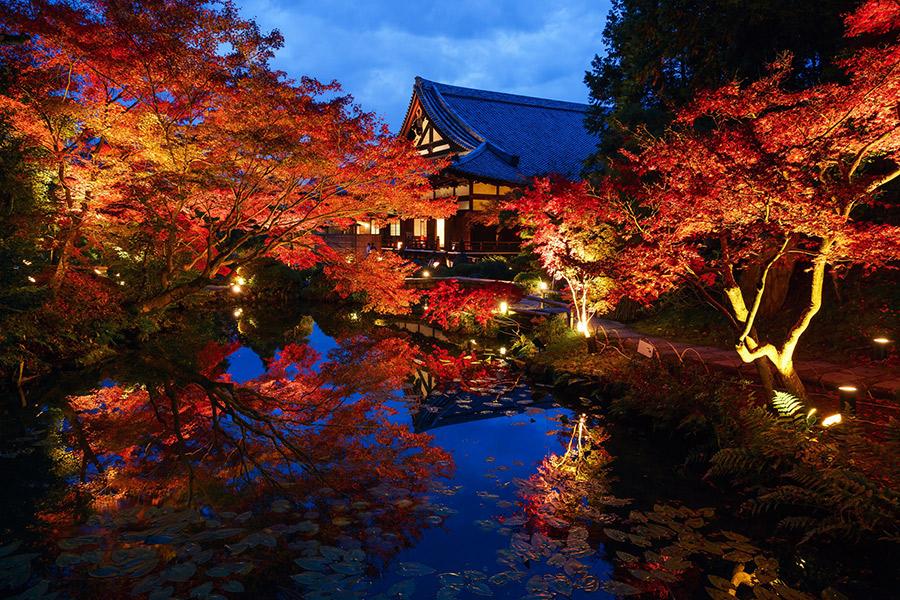 紫雲の庭の水面に映る紅葉
