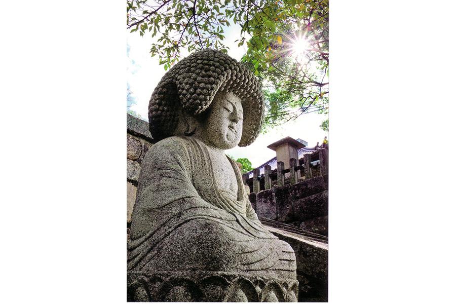 「アフロ仏」として話題となった五劫思惟阿弥陀仏も間近で見られる