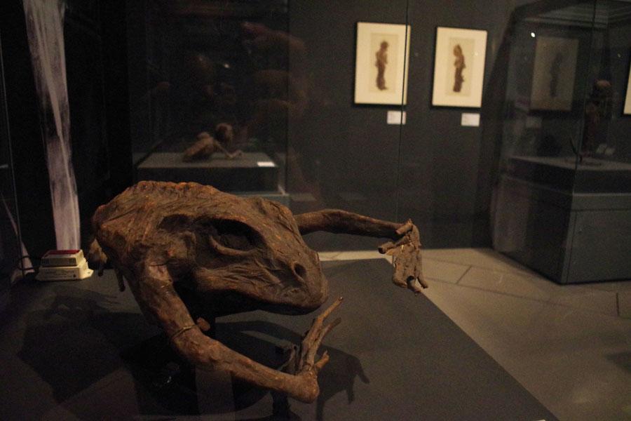 四六のガマ 1800年〜1829年制作 ライデン国立民族学博物館蔵